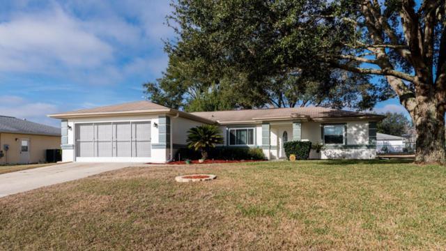10154 SW 62nd Court, Ocala, FL 34476 (MLS #531063) :: Bosshardt Realty