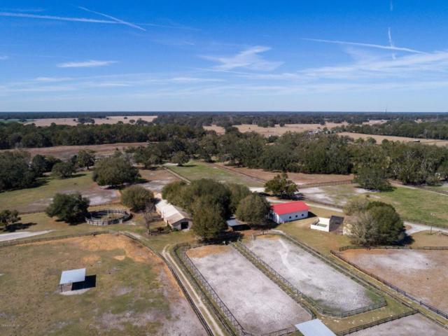 17490 S Highway 475, Summerfield, FL 34491 (MLS #531117) :: Pepine Realty