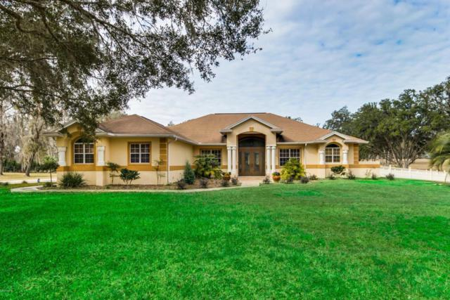 5320 NW 82nd Court, Ocala, FL 34482 (MLS #531167) :: Realty Executives Mid Florida