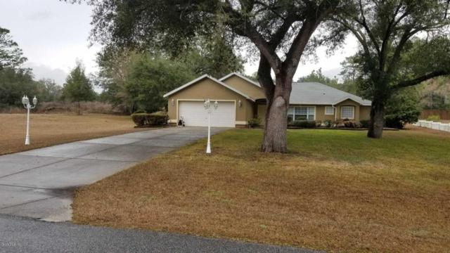 20155 SW 80th Place Road, Dunnellon, FL 34431 (MLS #531819) :: Bosshardt Realty