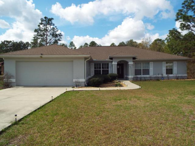 7782 SW 204th Avenue, Dunnellon, FL 34431 (MLS #531840) :: Realty Executives Mid Florida