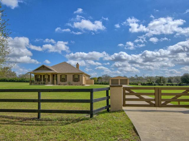 7346 NW 83rd Court Road, Ocala, FL 34482 (MLS #531857) :: Pepine Realty