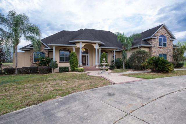 8225 SE 15th Court, Ocala, FL 34480 (MLS #531859) :: Pepine Realty