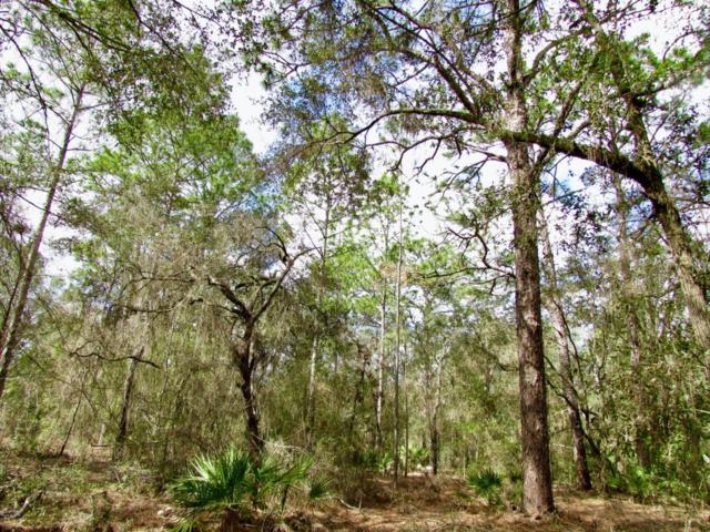 0 W 40 Highway, Ocala, FL 34481 (MLS #531876) :: Pepine Realty