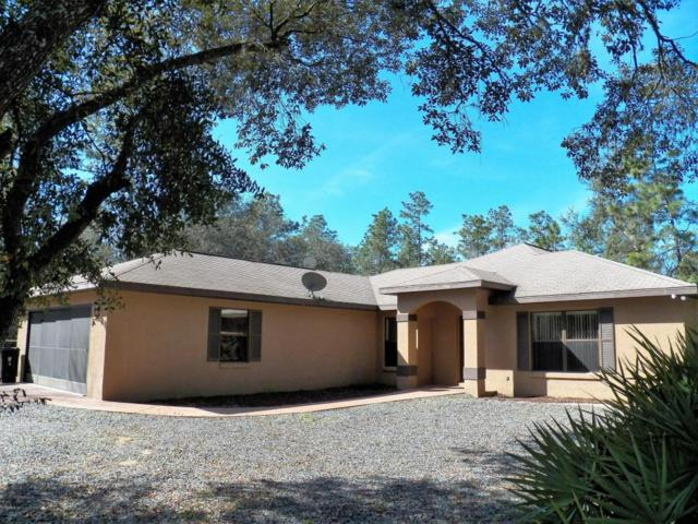 7360 SW 137th Court Road, Dunnellon, FL 34432 (MLS #531879) :: Realty Executives Mid Florida