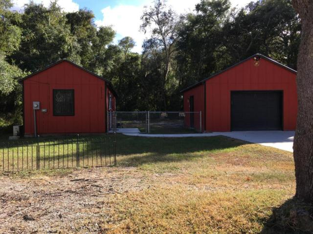 20930 SE 157th Street, Umatilla, FL 32784 (MLS #531953) :: Bosshardt Realty
