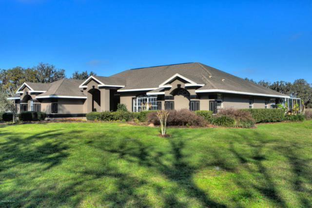 6175 SE Hwy 42, Summerfield, FL 34491 (MLS #532119) :: Realty Executives Mid Florida
