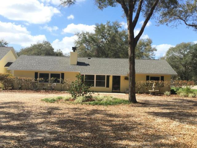 39131 Meyers Road, Lady Lake, FL 32159 (MLS #532147) :: Realty Executives Mid Florida