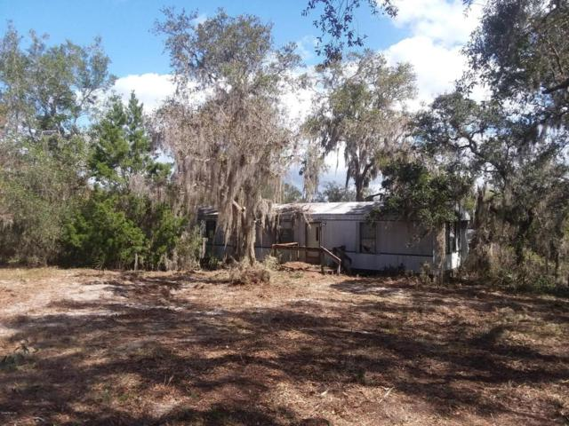 9441 NE 304 Avenue, Fort Mccoy, FL 32134 (MLS #532239) :: Realty Executives Mid Florida