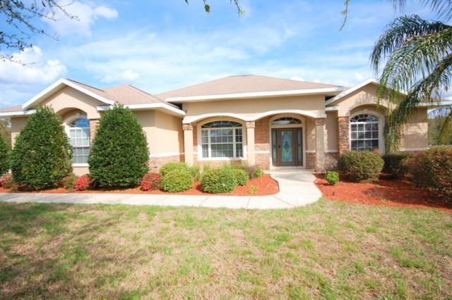 3877 SE 43rd Circle, Ocala, FL 34480 (MLS #532377) :: Bosshardt Realty