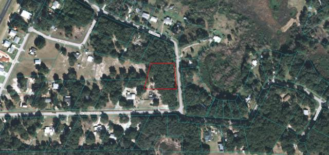 TBD SE 62ND PLACE, Ocklawaha, FL 32179 (MLS #532481) :: Bosshardt Realty