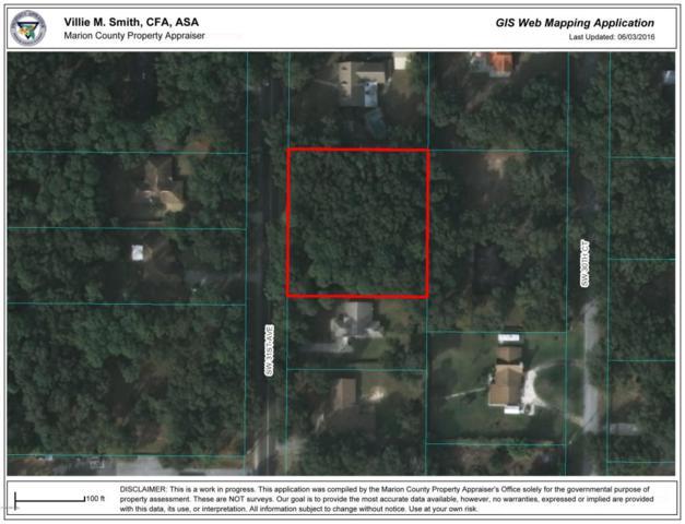 1741 SW 31st Avenue, Ocala, FL 34474 (MLS #532642) :: Bosshardt Realty