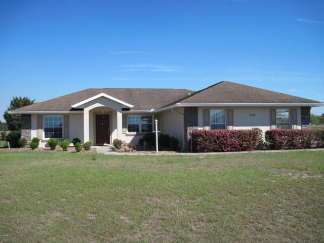 10597 SE 74th Terrace, Belleview, FL 34420 (MLS #532661) :: Bosshardt Realty