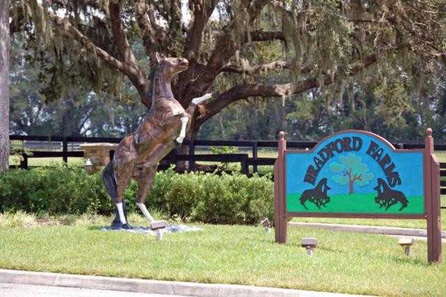 0000 SW 54 Terrace, Ocala, FL 34476 (MLS #532675) :: Bosshardt Realty