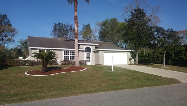 46 Hickory Loop, Ocala, FL 34472 (MLS #532830) :: Bosshardt Realty