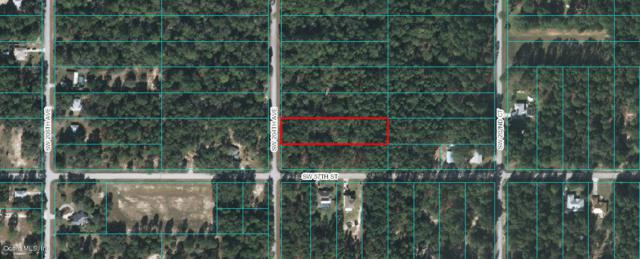 00 SW 204th Avenue, Dunnellon, FL 34431 (MLS #532853) :: Realty Executives Mid Florida