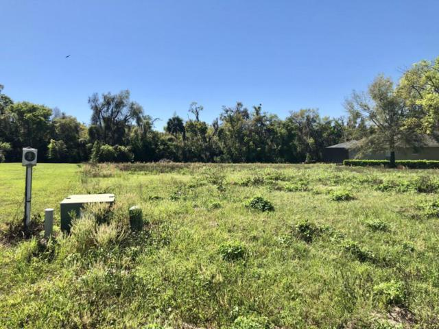 0 SE 156th Lane, Weirsdale, FL 32195 (MLS #533036) :: Bosshardt Realty