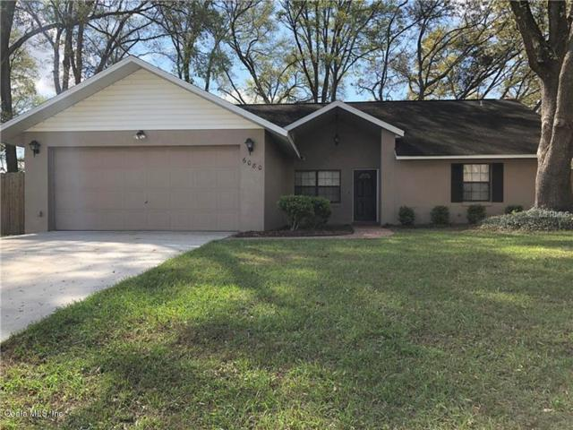 6080 SE 5th Place, Ocala, FL 34472 (MLS #533139) :: Bosshardt Realty