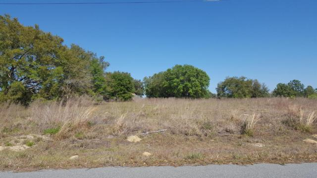 0 Locust Lane Terrace, Ocala, FL 34472 (MLS #533192) :: Realty Executives Mid Florida