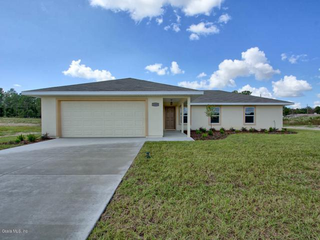 12300 SE 100th Court, Belleview, FL 34420 (MLS #533222) :: Realty Executives Mid Florida