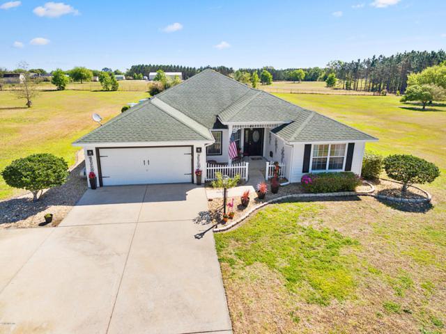 9245 County Road 128C, Wildwood, FL 34785 (MLS #533291) :: Bosshardt Realty