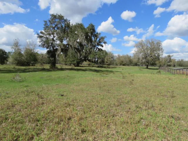 2590 NW 150th Avenue, Morriston, FL 32668 (MLS #533301) :: Realty Executives Mid Florida