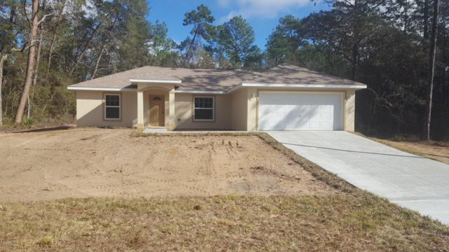 16205 SW 24th Terrace, Ocala, FL 34473 (MLS #533400) :: Realty Executives Mid Florida