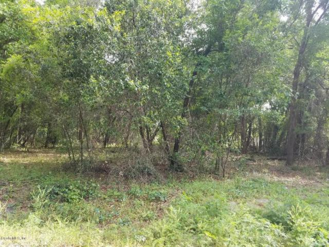 0 SE 103rd Lane, Ocklawaha, FL 32179 (MLS #533430) :: Bosshardt Realty