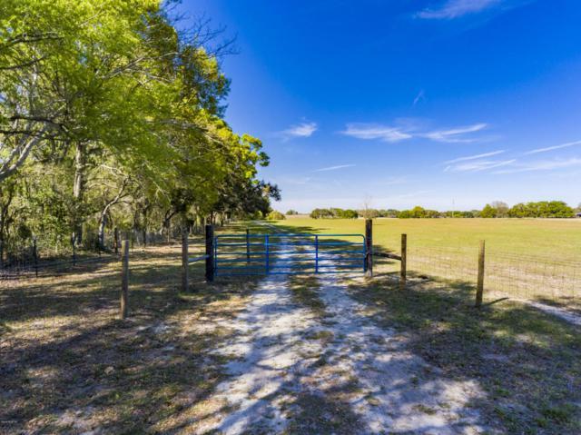 00 W Highway 328, Ocala, FL 34481 (MLS #533454) :: Bosshardt Realty