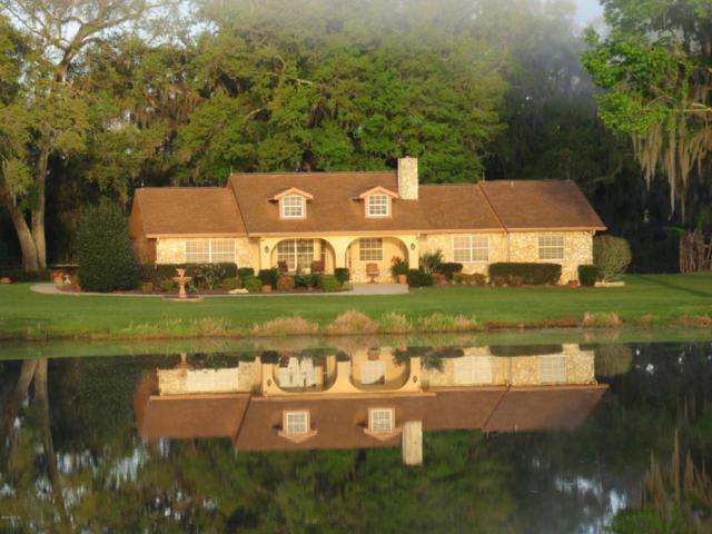 14360 NW Highway 225A, Reddick, FL 32686 (MLS #533514) :: Bosshardt Realty