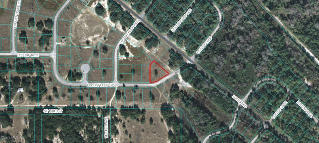 000 Locust Loop, Ocala, FL 34472 (MLS #533570) :: Realty Executives Mid Florida