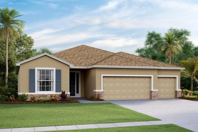 1831 NE 50th Court, Ocala, FL 34470 (MLS #533662) :: Bosshardt Realty