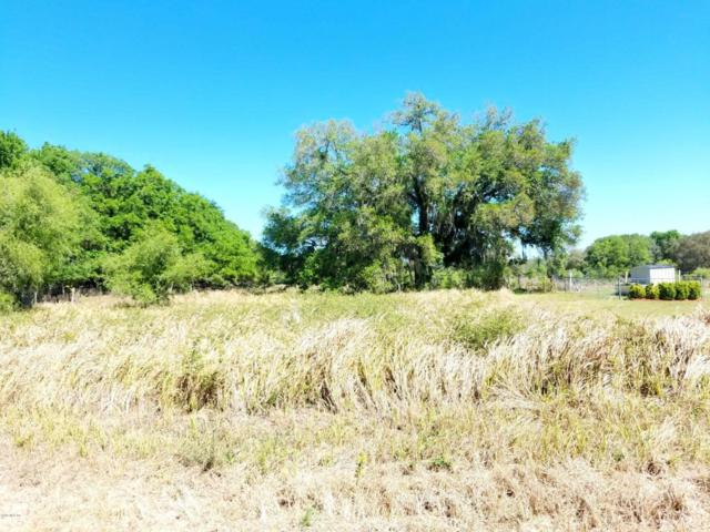99 Pine Trace, Ocala, FL 34472 (MLS #533670) :: Realty Executives Mid Florida