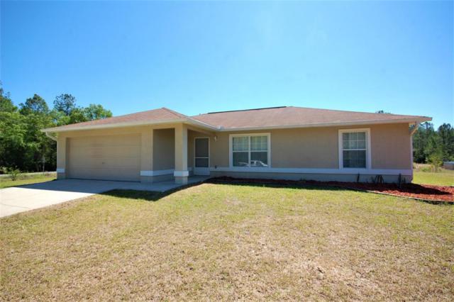 10490 NE 130 Avenue, Fort Mccoy, FL 32134 (MLS #533743) :: Bosshardt Realty