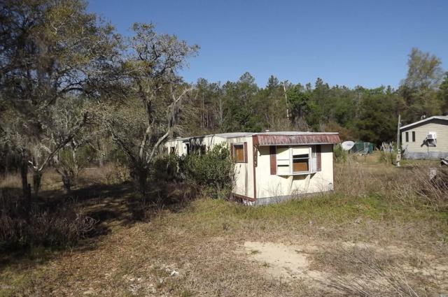 16250 SE 252nd Terrace, Umatilla, FL 32784 (MLS #533769) :: Realty Executives Mid Florida