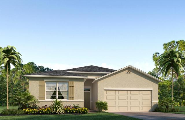 5023 SW 58th Place, Ocala, FL 34474 (MLS #533776) :: Bosshardt Realty