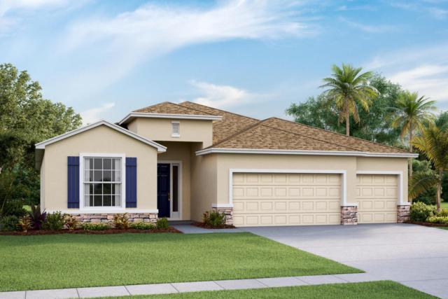 5704 SW 50th Court, Ocala, FL 34474 (MLS #533780) :: Bosshardt Realty