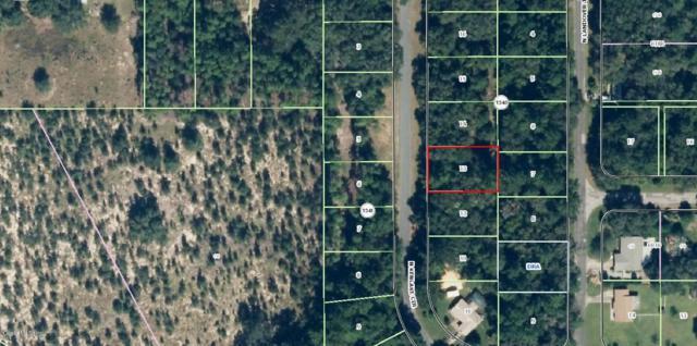 11570 N Kenlake Circle, Citrus Springs, FL 34434 (MLS #533852) :: Bosshardt Realty