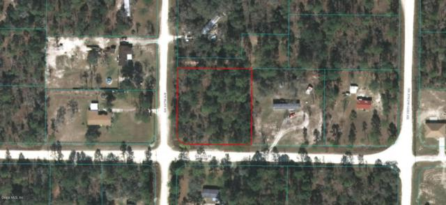 0 SW 167 Avenue, Ocala, FL 34481 (MLS #533905) :: Realty Executives Mid Florida