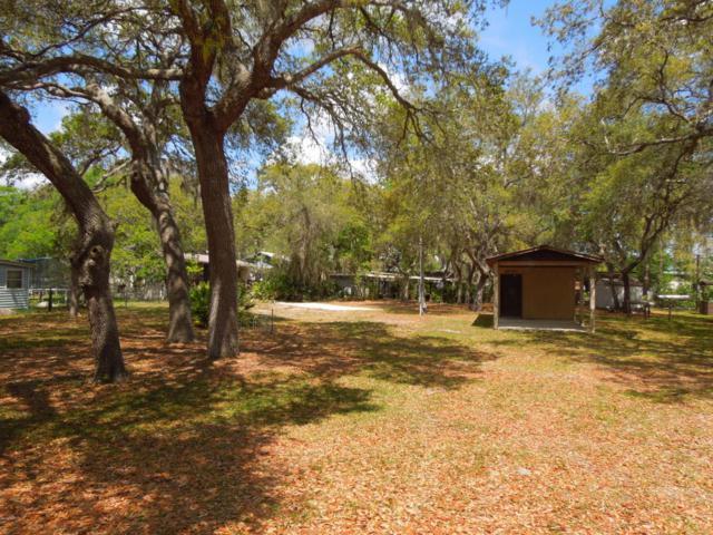24831 NE 136 Lane, Salt Springs, FL 32134 (MLS #534074) :: Bosshardt Realty