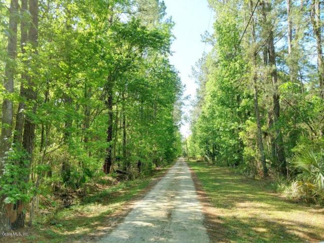 31ac NE Hwy 315, Fort Mccoy, FL 32134 (MLS #534120) :: Pepine Realty