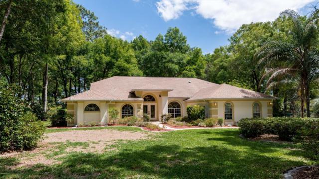 10401 SW 65th Terrace, Ocala, FL 34476 (MLS #534130) :: Bosshardt Realty