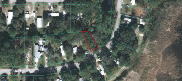 18701 SE 21st Place, Silver Springs, FL 34488 (MLS #534197) :: Bosshardt Realty