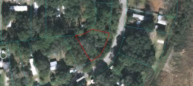 18721 SE 21st Place, Silver Springs, FL 34488 (MLS #534201) :: Bosshardt Realty