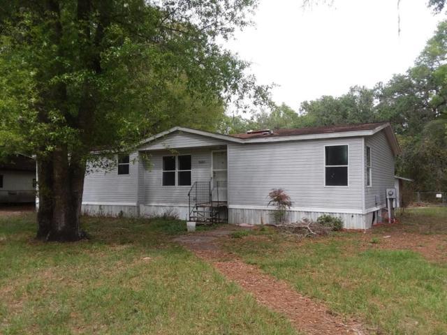 15051 NE 141 Street, Fort Mccoy, FL 32134 (MLS #534208) :: Bosshardt Realty