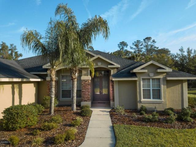 3843 SE 38th Loop, Ocala, FL 34480 (MLS #534265) :: Bosshardt Realty