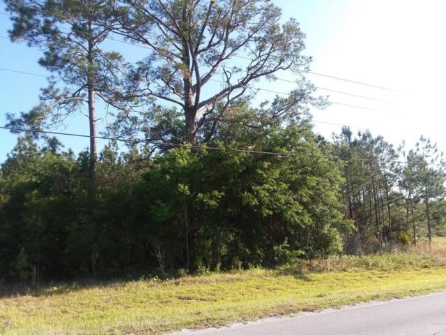 0 E Hwy 316, Fort Mccoy, FL 32134 (MLS #534346) :: Bosshardt Realty