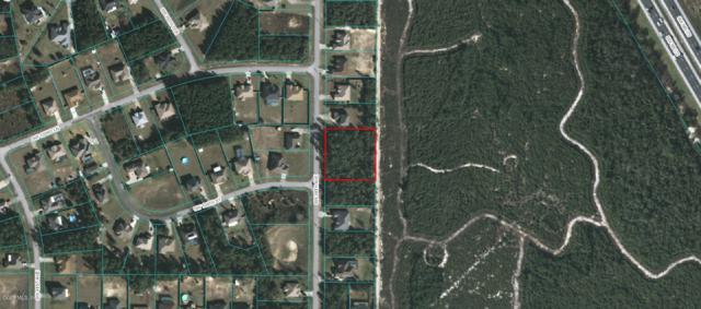 TBD SW 38th Avenue, Ocala, FL 34476 (MLS #534523) :: Pepine Realty