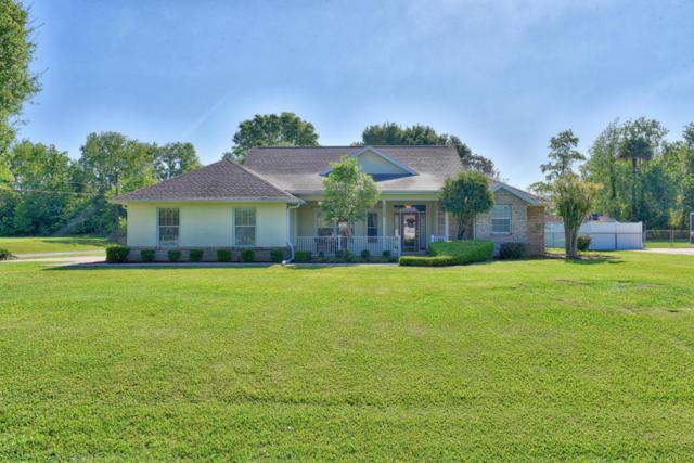 2880 NE 66th Street, Ocala, FL 34479 (MLS #534840) :: Bosshardt Realty