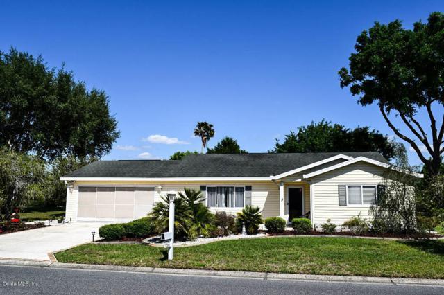 17585 SE 97th Avenue, Summerfield, FL 34491 (MLS #534858) :: Pepine Realty
